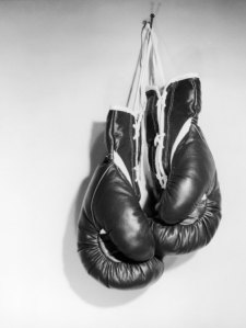 74824d1315297315-boxing-gloves-boxing-gloves-picture-2